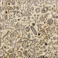 Sem título, 2019, caneta sobre papel de parede, 40x30cm – Ref CCMP21-021